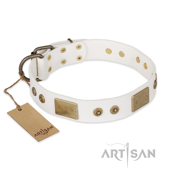 Stylish design leather dog collar for easy wearing