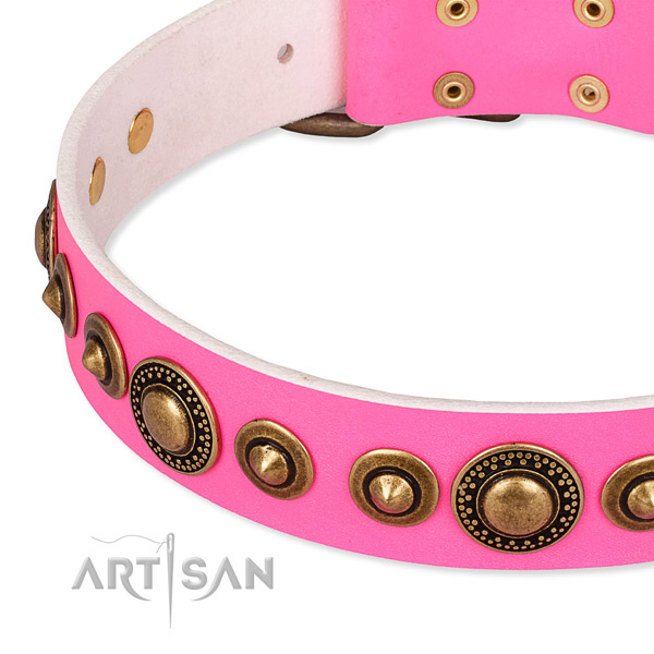 Flexible leather dog collar handcrafted for your handsome dog