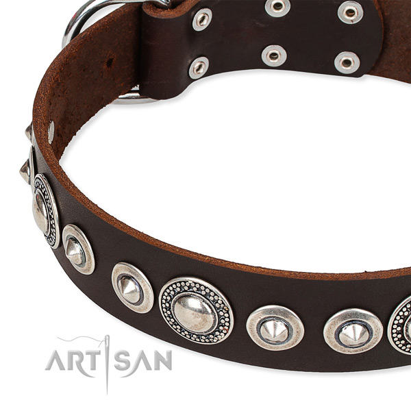 Comfortable wearing studded dog collar of high quality full grain leather