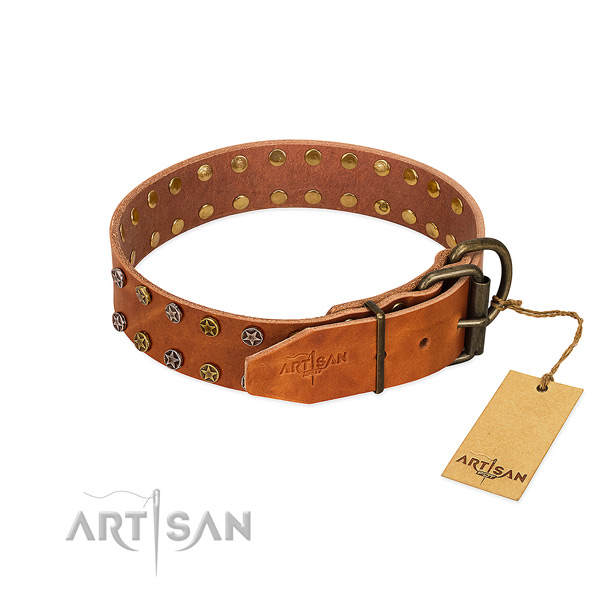Stylish walking full grain leather dog collar with inimitable studs