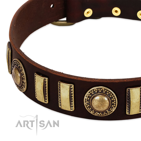 Top notch full grain natural leather dog collar with durable hardware