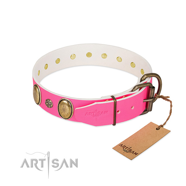 Durable leather dog collar with decorations