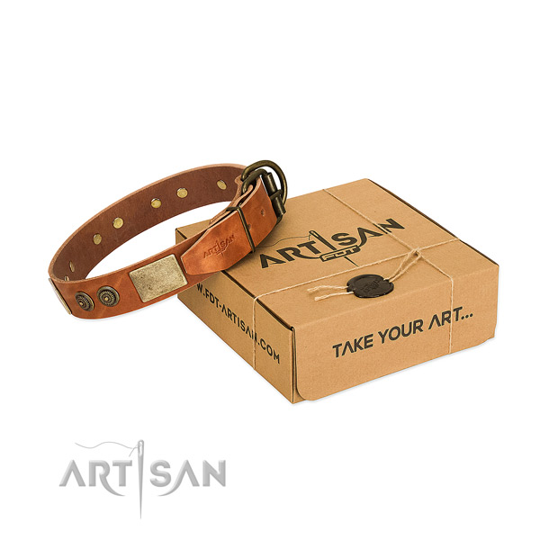 Reliable hardware on full grain natural leather dog collar for walking