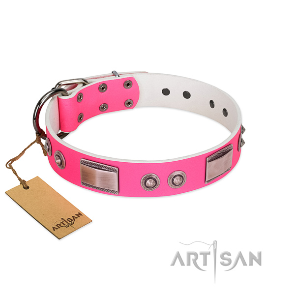 Impressive full grain leather collar with adornments for your pet
