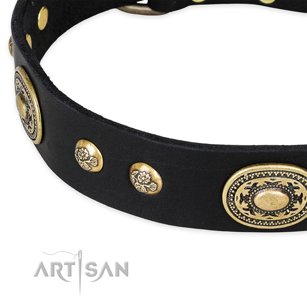 Adorned full grain genuine leather collar for your beautiful pet