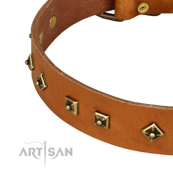 Remarkable full grain natural leather collar for your stylish dog