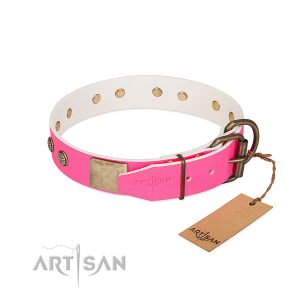 Rust resispinkt studs on walking dog collar