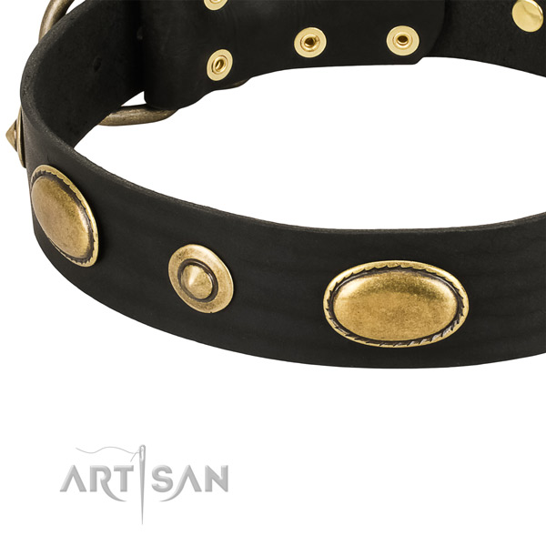 Corrosion resistant embellishments on full grain leather dog collar for your dog