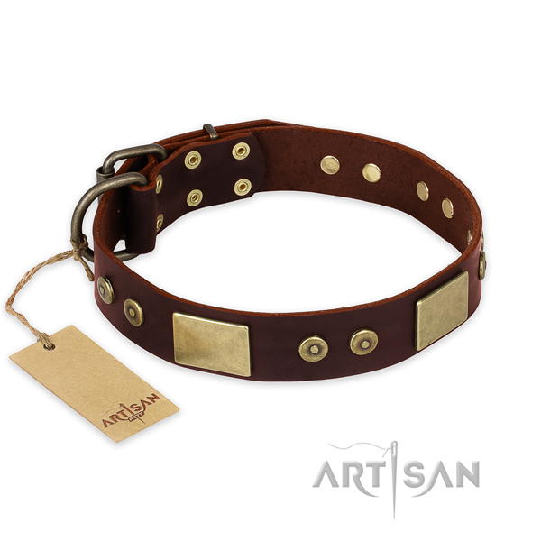 Significant full grain natural leather dog collar for daily use