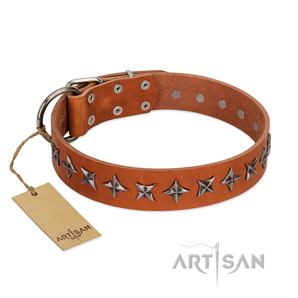 Handy use dog collar of strong full grain leather with embellishments