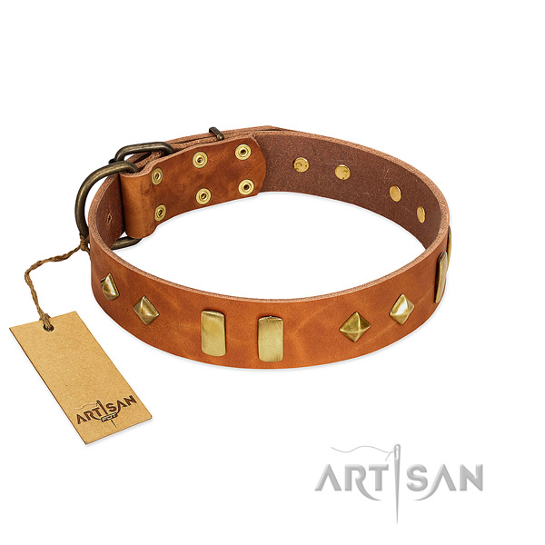 Daily use soft full grain genuine leather dog collar with embellishments