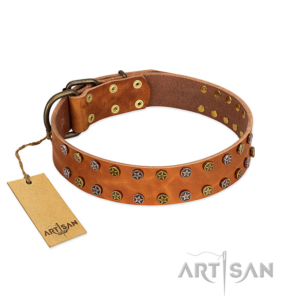 Stylish walking top rate natural leather dog collar with decorations