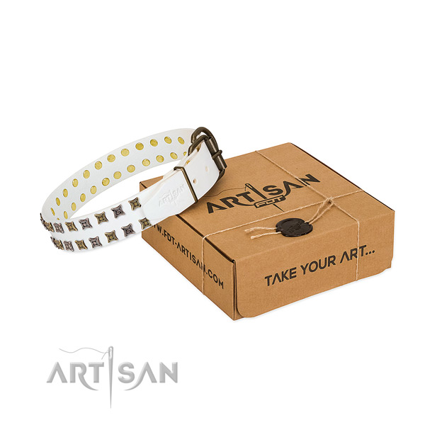 Full grain genuine leather collar with extraordinary studs for your dog