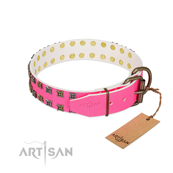 Full grain genuine leather collar with stylish embellishments for your four-legged friend