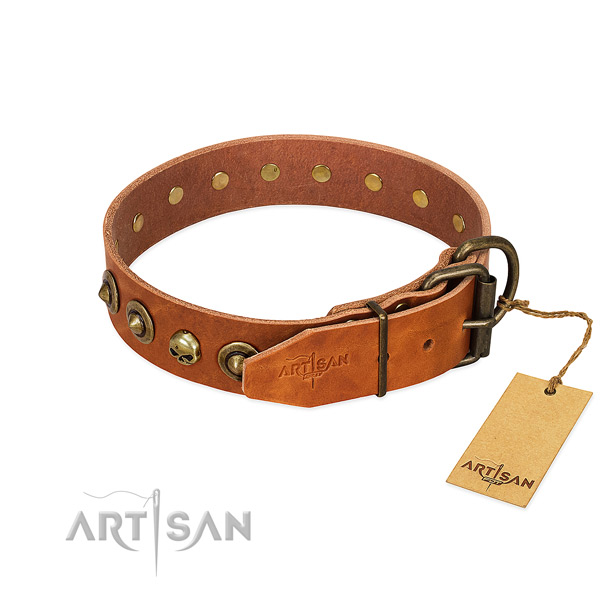 Full grain leather collar with inimitable studs for your canine