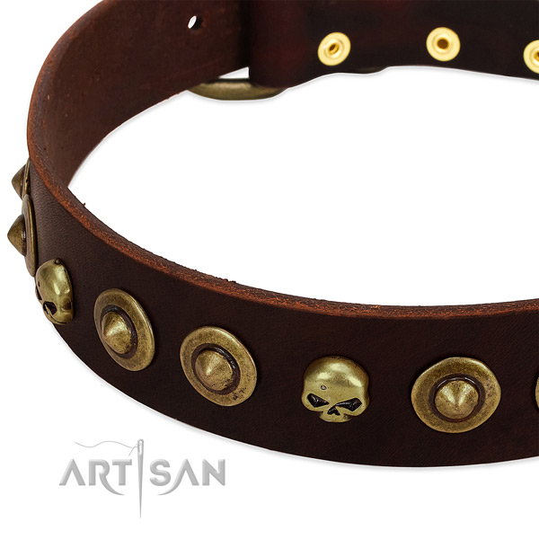 Awesome decorations on full grain natural leather collar for your pet