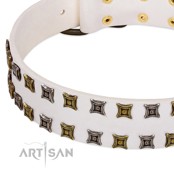 Leather dog collar with embellishments for your impressive doggie