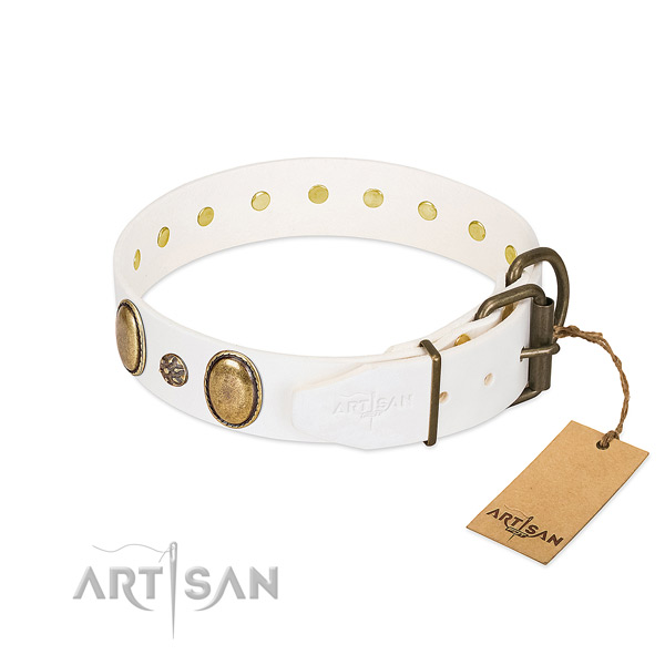 Daily walking top notch leather dog collar with studs