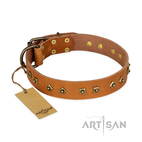 Fashionable leather dog collar with durable hardware