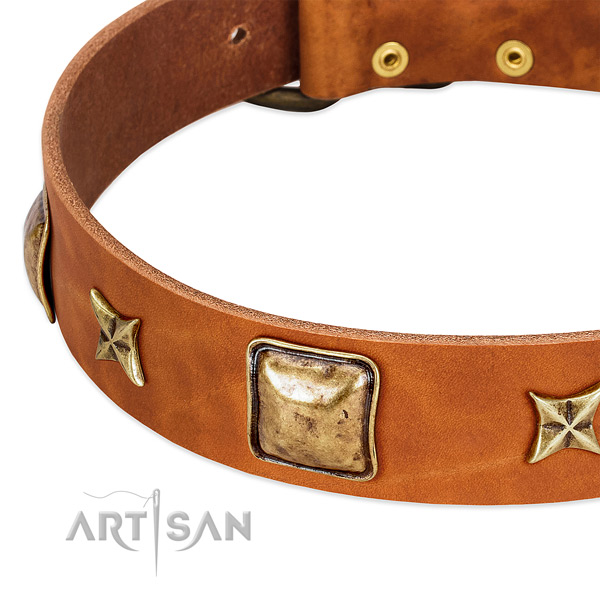 Rust-proof D-ring on leather dog collar for your dog