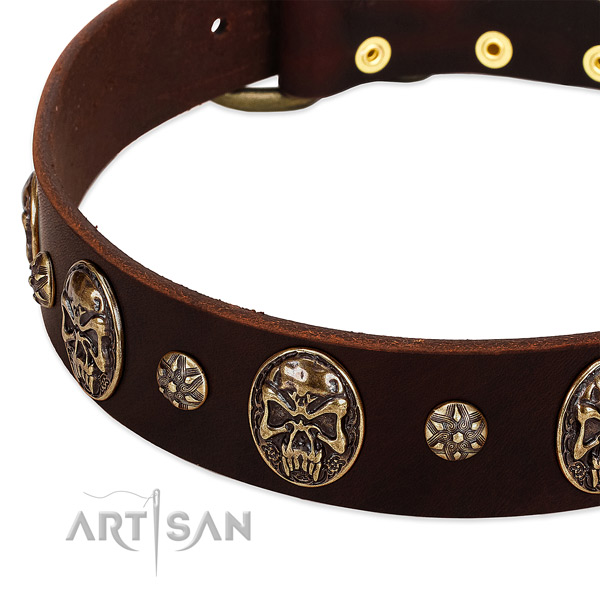 Reliable fittings on full grain natural leather dog collar for your dog
