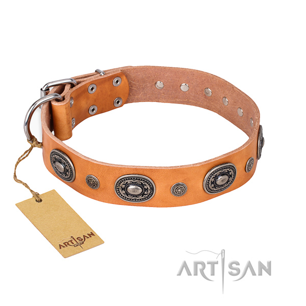 Durable leather collar crafted for your four-legged friend