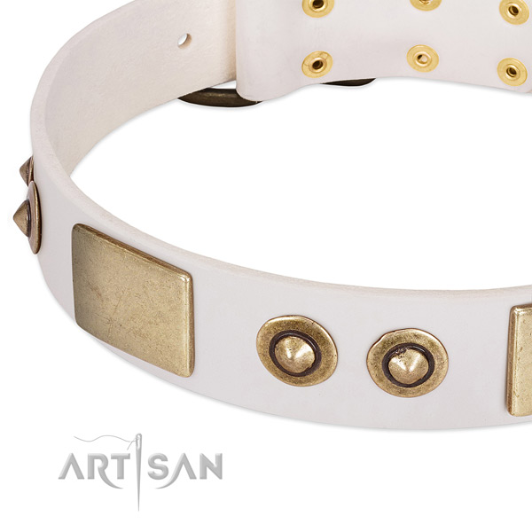 Rust-proof buckle on natural genuine leather dog collar for your pet