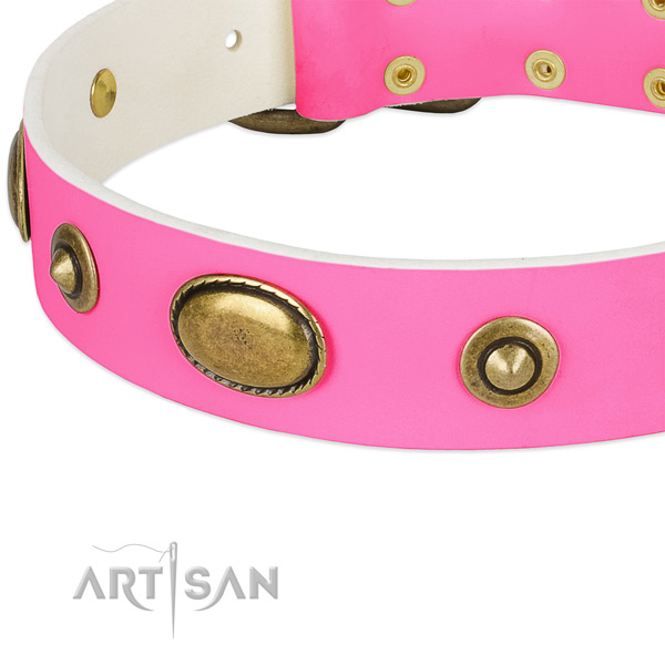 Corrosion resistant decorations on genuine leather dog collar for your pet