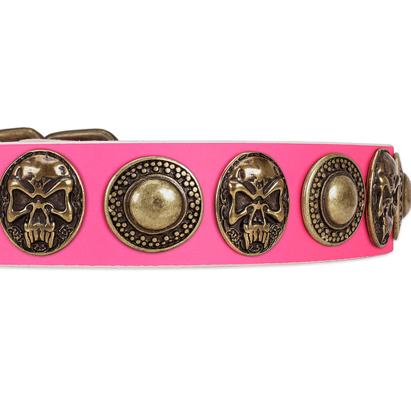 Strong studs on genuine leather dog collar for your canine