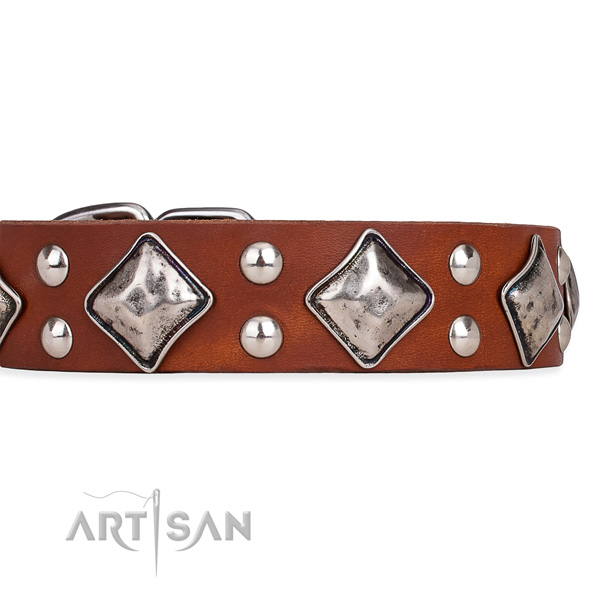 Full grain natural leather dog collar with exquisite reliable adornments