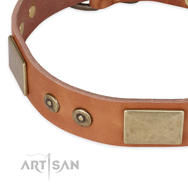 Strong hardware on genuine leather dog collar for your four-legged friend