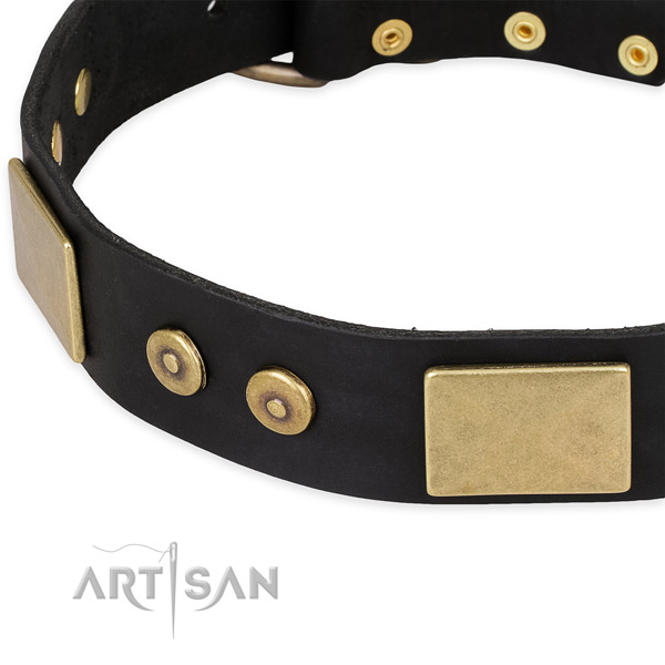 Strong decorations on full grain natural leather dog collar for your canine