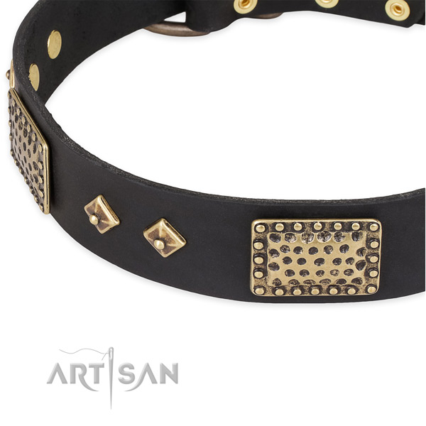 Strong adornments on full grain leather dog collar for your pet
