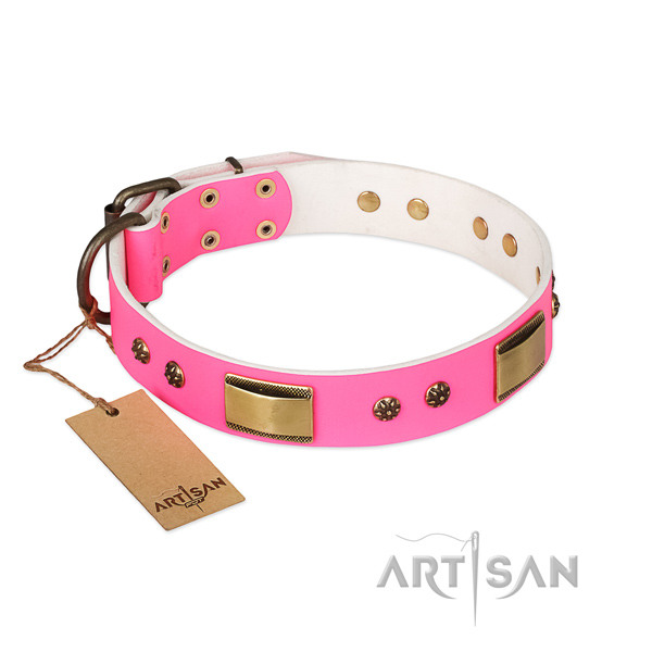 Exquisite leather collar for your four-legged friend
