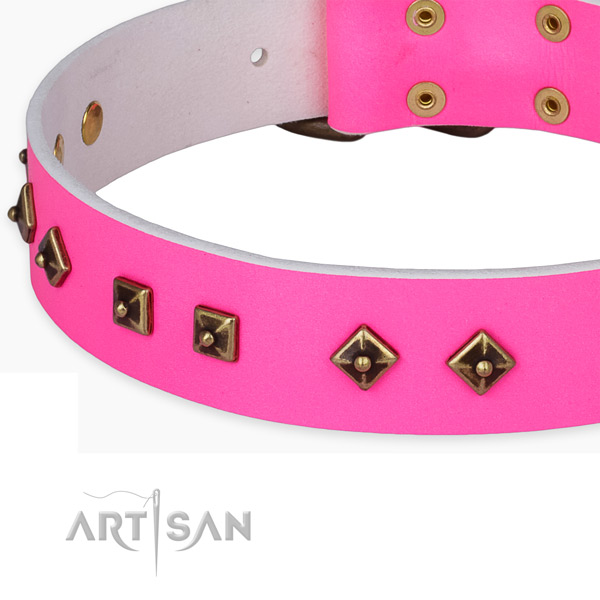 Inimitable genuine leather collar for your lovely dog