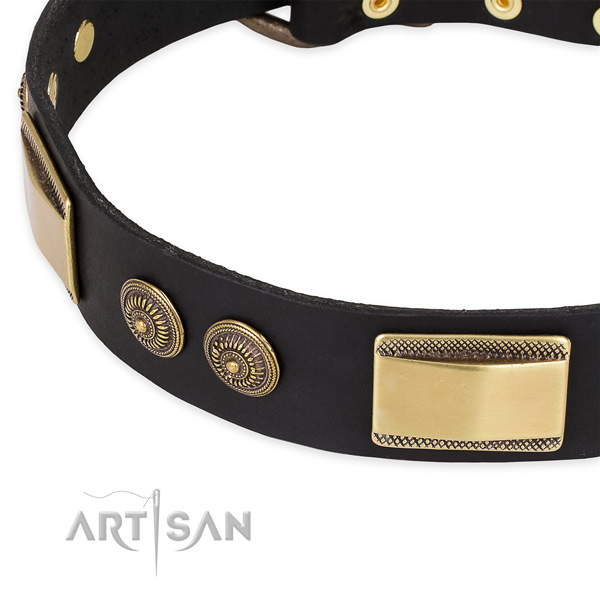 Incredible full grain leather collar for your stylish doggie