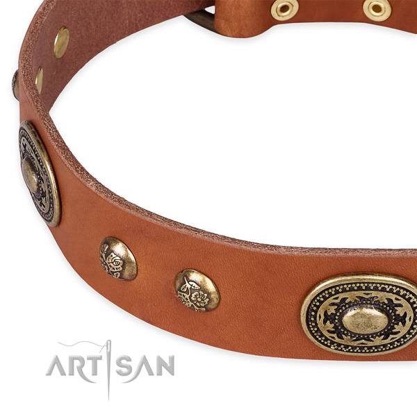 Significant full grain leather collar for your stylish pet