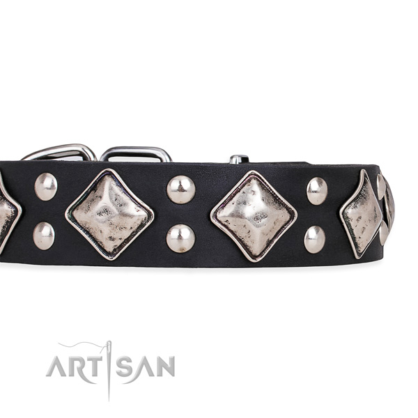 Full grain leather dog collar with stunning durable studs