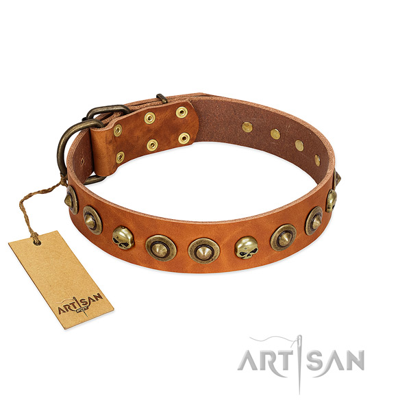 Natural leather collar with unusual adornments for your pet