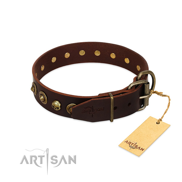 Full grain natural leather collar with trendy embellishments for your dog