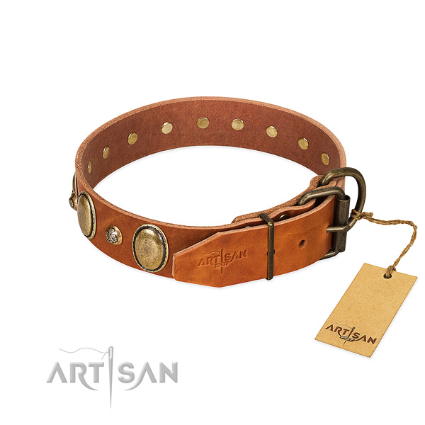 Incredible full grain genuine leather dog collar with corrosion resistant fittings