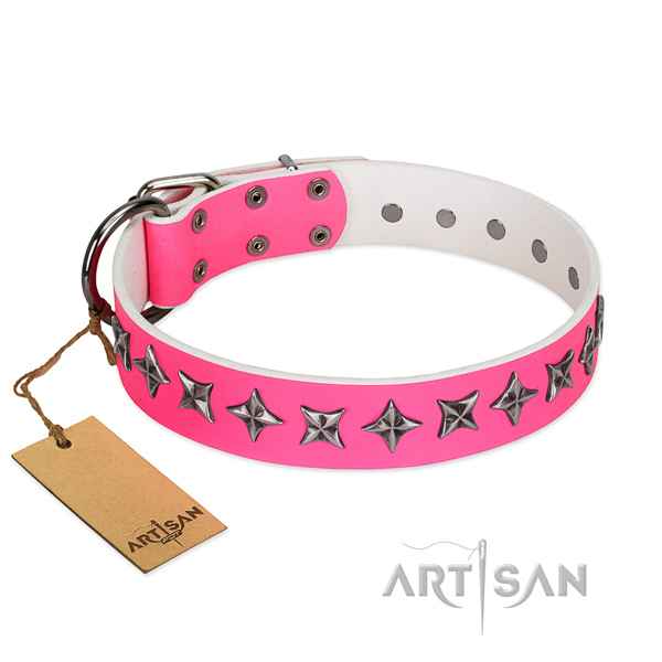 Strong full grain leather dog collar with unique adornments