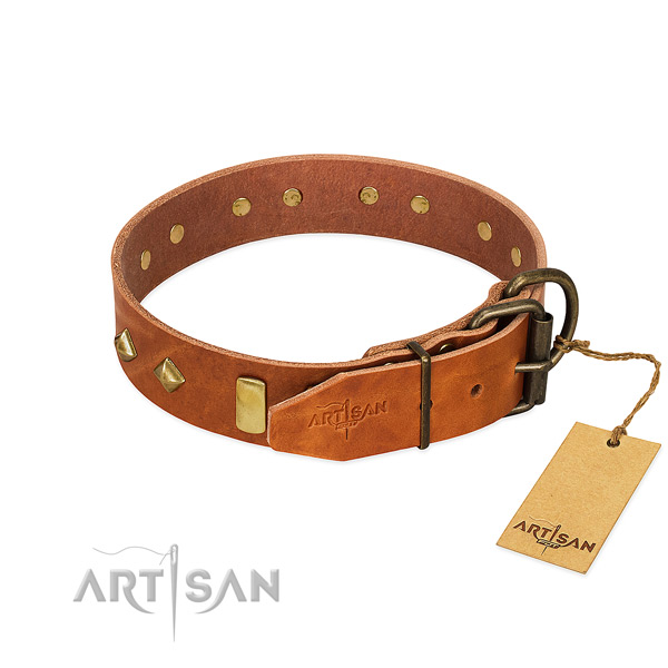 Daily walking leather dog collar with incredible decorations