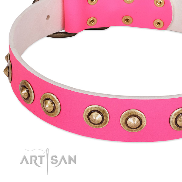 Rust resistant studs on full grain natural leather dog collar for your four-legged friend