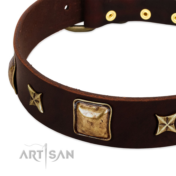 Reliable fittings on genuine leather dog collar for your pet