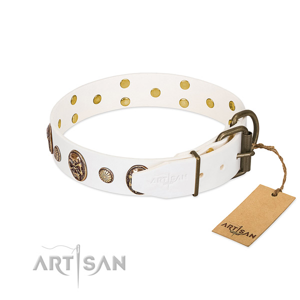 Strong hardware on full grain leather collar for walking your doggie