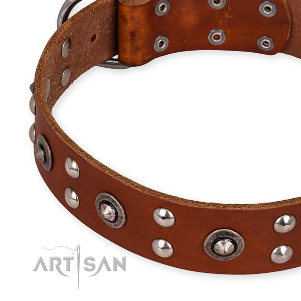 Full grain genuine leather collar with durable traditional buckle for your beautiful four-legged friend