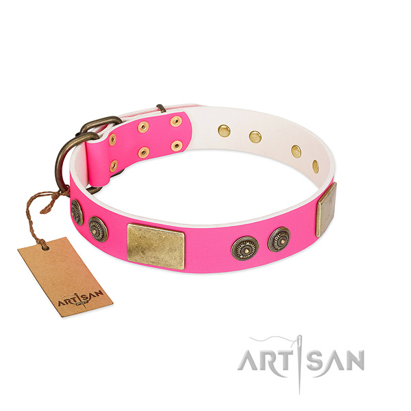 Studded natural genuine leather dog collar for daily walking