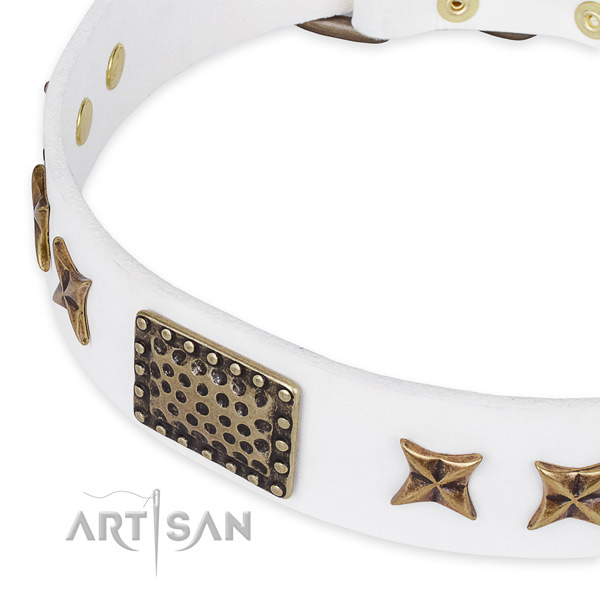 Full grain genuine leather collar with reliable fittings for your attractive dog