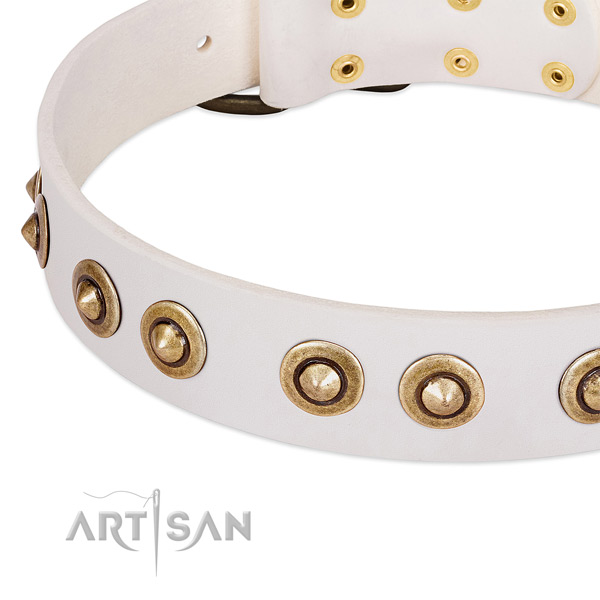 Durable adornments on natural leather dog collar for your doggie